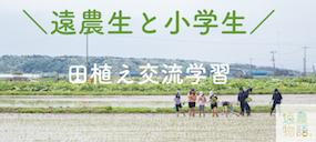 【田植え交流学習】遠農生と小学生が泥だらけで交流!