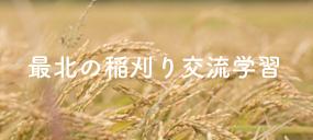 \雨に負けない!稲刈り交流学習2017/